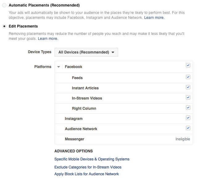Boosterberg - Facebook Ads Academy - Manual FB Ad Placement Options